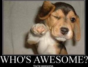 Puppy with words who is awesome, you are awesome