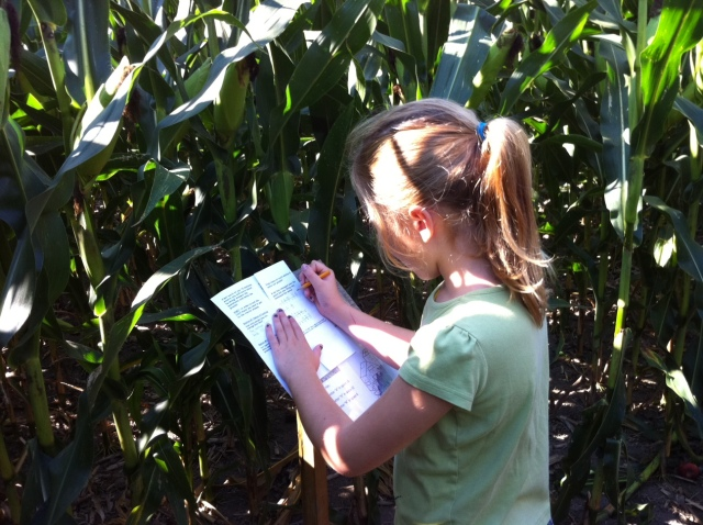 Girl in a corn maze
