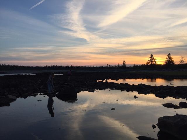 acadia national park beach at sunset