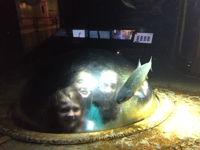 Girls looking at fish from a porthole