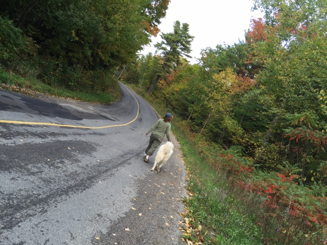 Woman and dog walking on country road