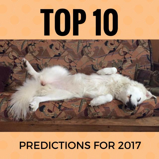 top predictions