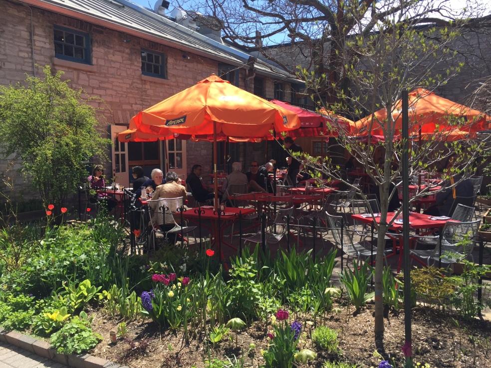 Chez piggy patio