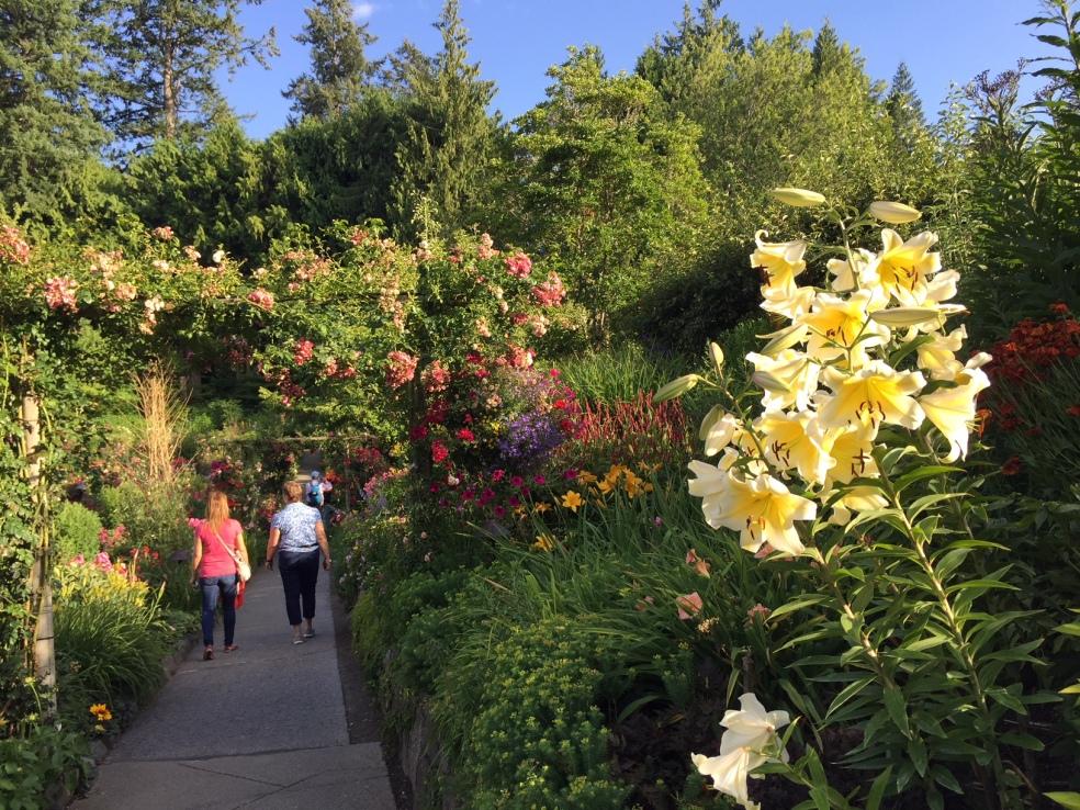 Butchart gardens in Victoria
