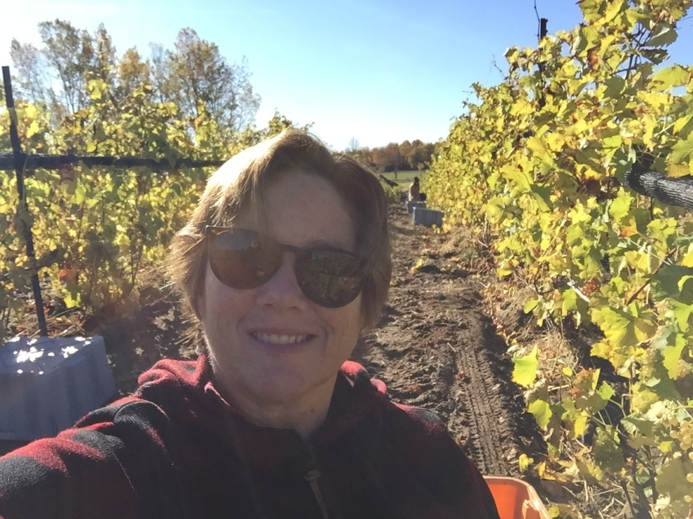 Me in the vineyard
