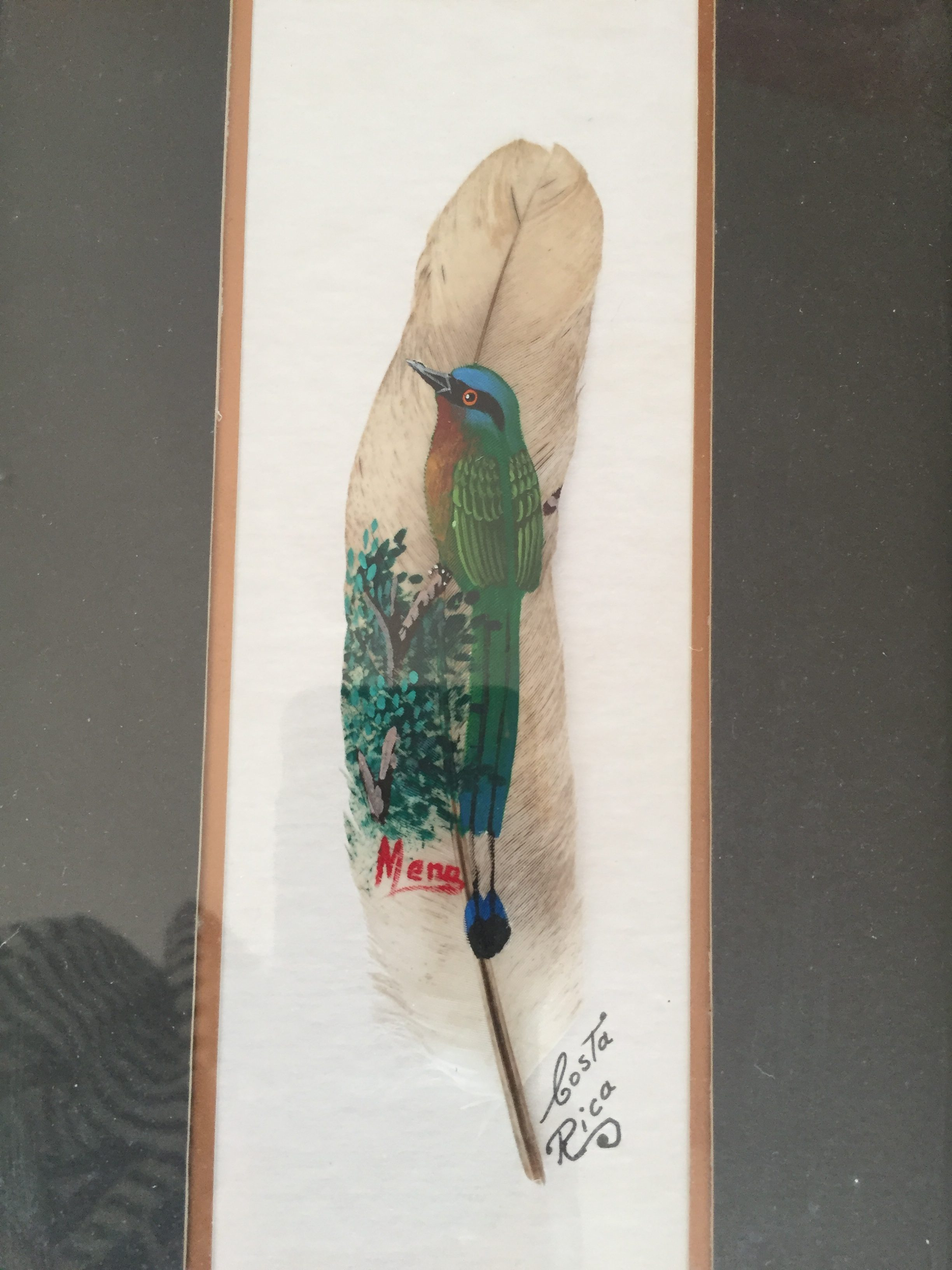 handpainted feather